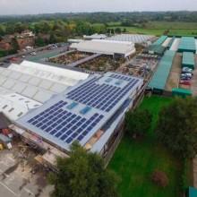 Garden Centre Leicester | Synergy Power Ltd
